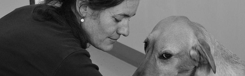 Tierakupunktur Region Bern, Akupunktur für Hund und Pferd